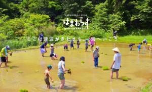 あつまれ、はまわらす!はまわらす米の田植え&キャンプ場づくり② @ 浜わらす田んぼ